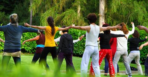 Yoga sur l'île